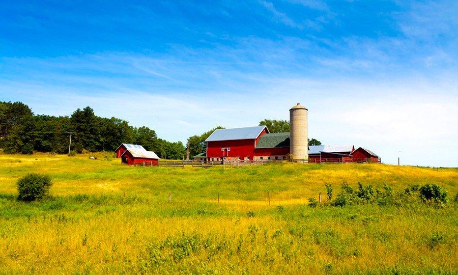 1º Bachillerato 2020- UNIT 4 Largest-farms-thegem-blog-default-large